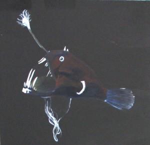 poisson des abysses